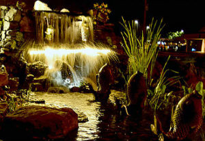 Visit at night to get ideas & inspiration on lighting up your own pond & water features!