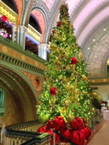 tree at Union Station