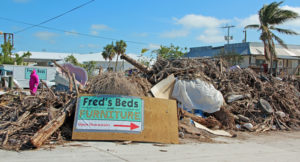 Debris from Hurricane Irma dots the landscape on some areas while other area escaped her fury.